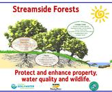 Forested streamside buffers protect your property from the river, and the river from you!
