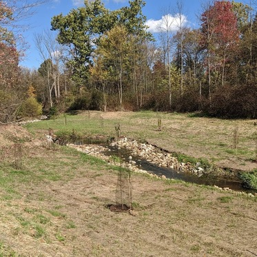 The final, but not yet fully grown, product of the North Royalton stream and wetland restoration site.